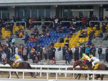 0 - busan races
