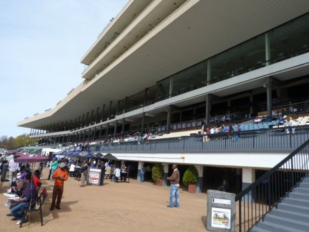 The grandstand.