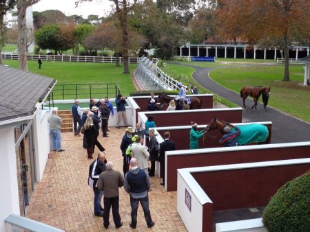 Parade Ring and Unsaddling Enclosure.