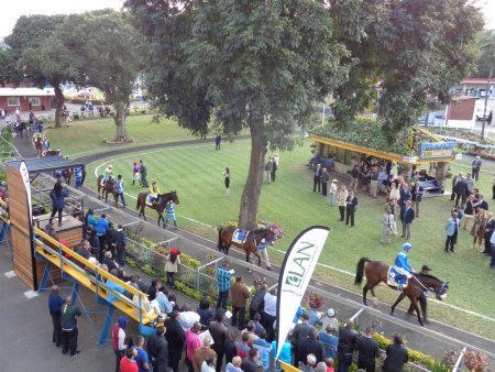 The Parade Ring.