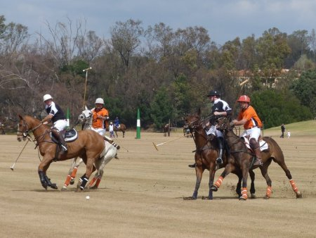 Prince of wales polo cup 1
